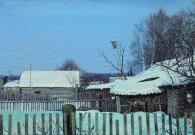 Штрикман Л.Л. Деревня Новоселки. 2013 г. Х.м. 45х100