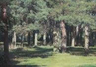 Штрикман Л.Л. В сосновом лесу. 2014 г. Х.м. 70х90