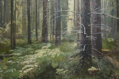 Ананьев А.М. Освещенный лес,  2016г., х.м.